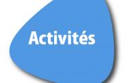 Cour des comptes du Gabon, Guinée, Niger, RD Congo